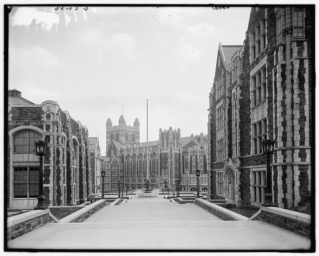 College of the City of New York, 1900s