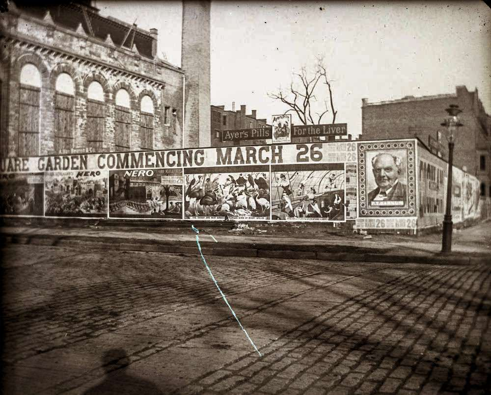 Advertising for Barnum and Bailey's Circus, 5th Avenue and 75th Street, 1891