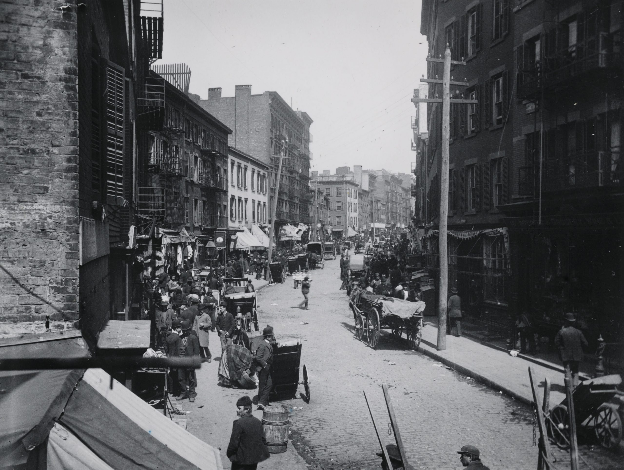 Mulberry Bend, 1890