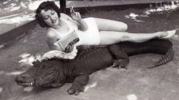 people hanging out with alligators