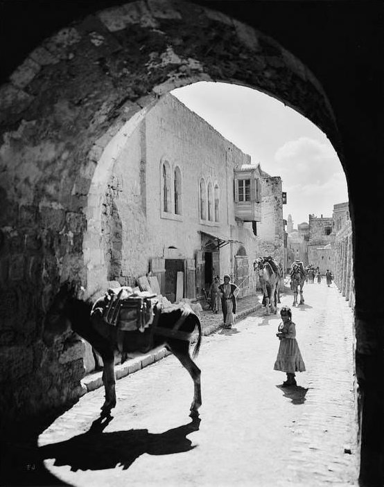 A donkey waits in the street of arches, Circa 1898-1914
