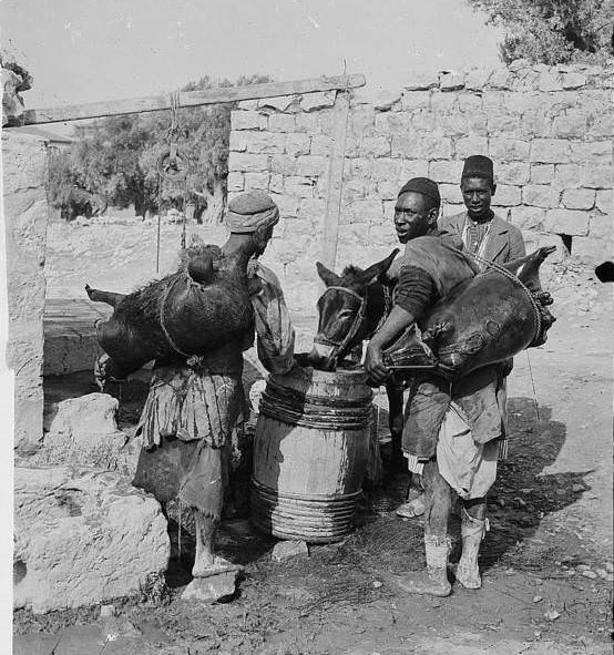 Workers carrying waterskins, Circa 1900-1920