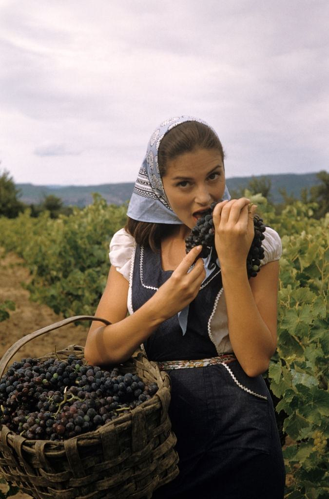 """Pier Angeli during the filming of """"Les Vendanges"""""""