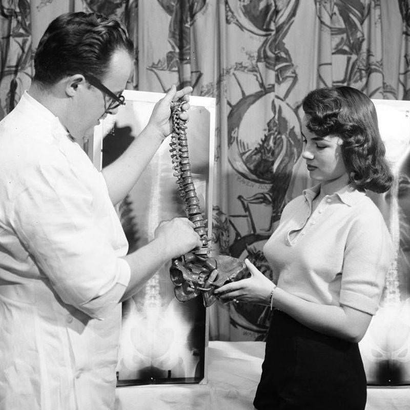 At a chiropractic beauty contest, a chiropractor shows a spine replica to model Lois Conway, one of three winners at the contest, 1956.
