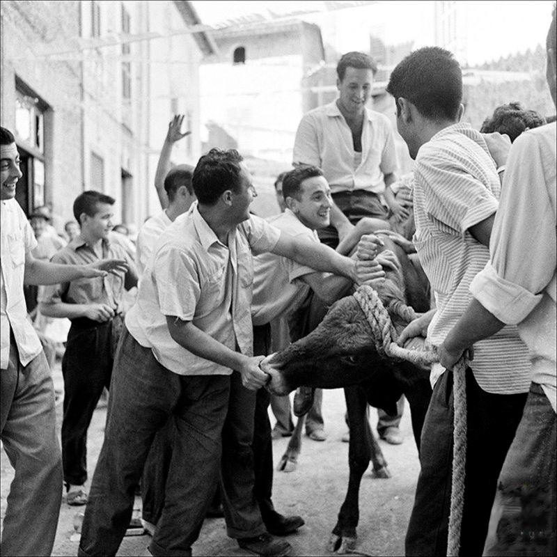 Men and bull in a street in Fornalutx, 1957