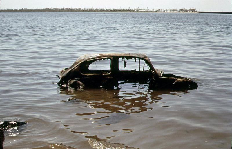 An abandoned car at the river, Queens, New York, May 1973