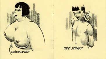 Breastypes! What's Yours? A Ridiculous 1940's Pocket Comic Book that Labeled Different Shapes and Sizes of Woman's Breast