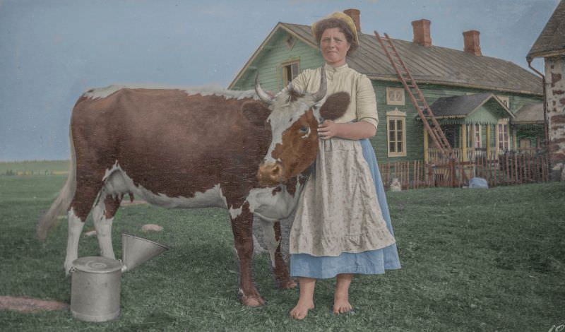 A woman and a cow in Finland in 1910