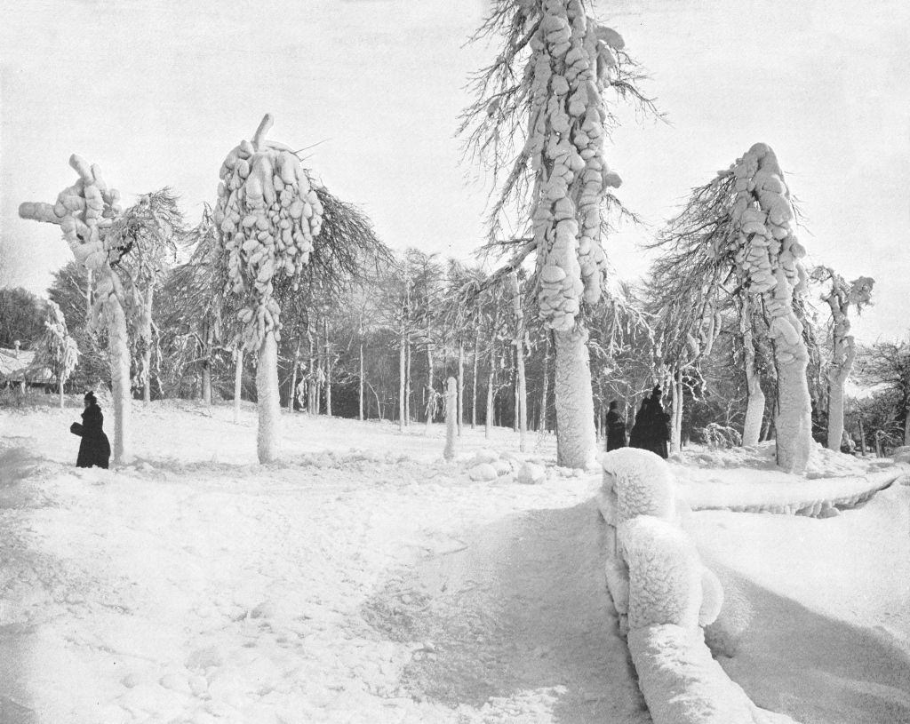 Frost Work In Prospect Park, 1900s.