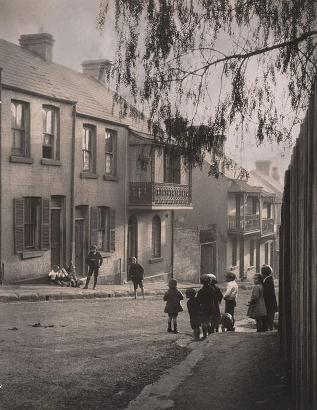 A Surry Hills alleyway, 1911