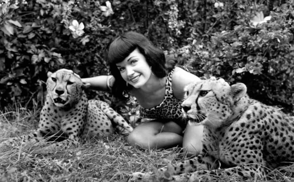 Bettie Page with Cheetahs