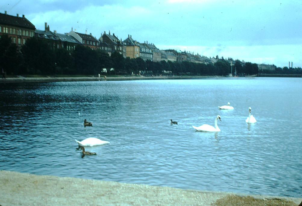 City Lake, Copenhagen, Denmark, 1940s.