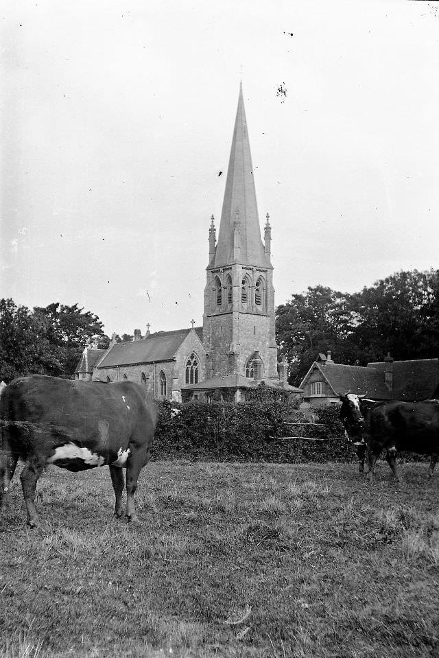 Essex. St. Mary's Church, Widford