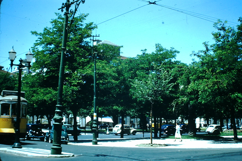 Cross section of Ave Liberty, Lisbon, 1950s.
