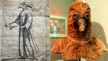 17th Century Plague Doctor Mask