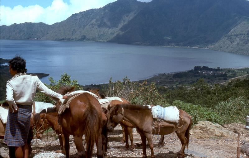 Hawkers and vendors are aggressive at the look-out over Lake Batur, the lake is in the large crater of volcano Mount Batur, 1970s