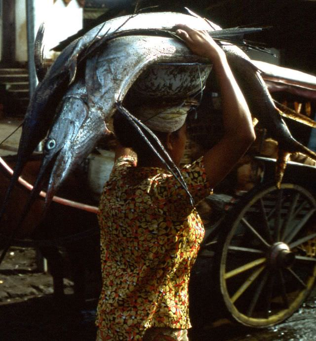 Balinese woman carrying not one but two swordfishes on her head to a market near Kuta one morning, 1970s