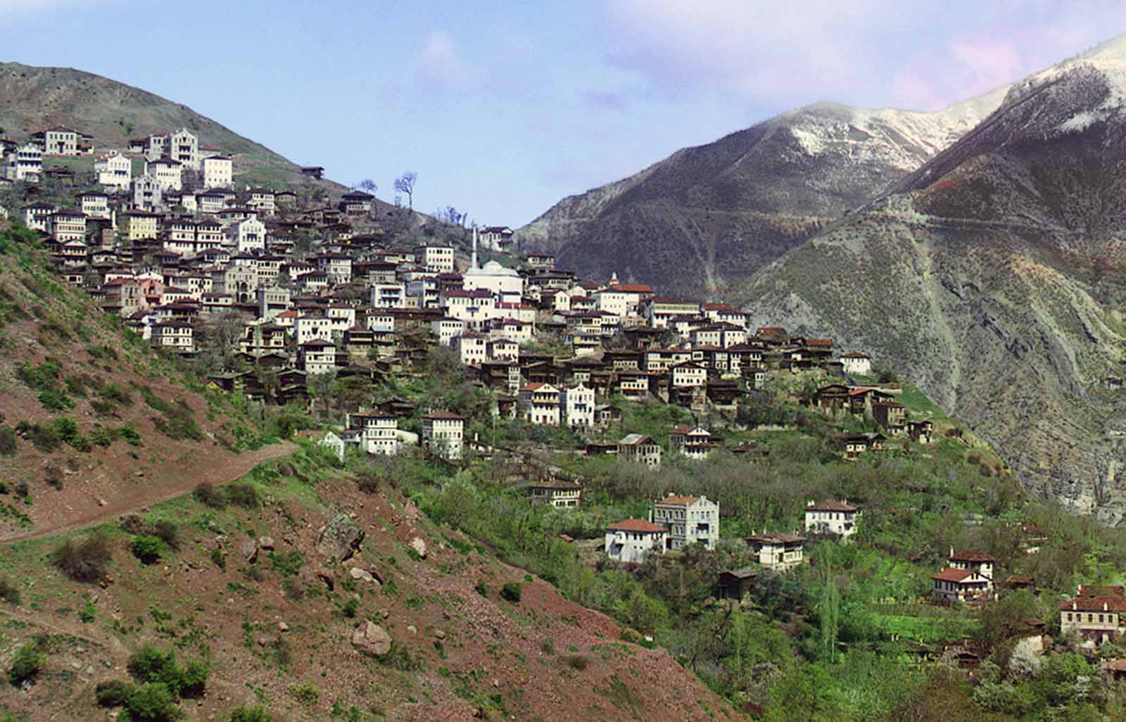 General view of Artvin (now in Turkey) from the small town of Svet, 1910.