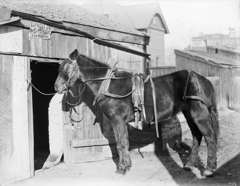 Freight office & house, 1890s.