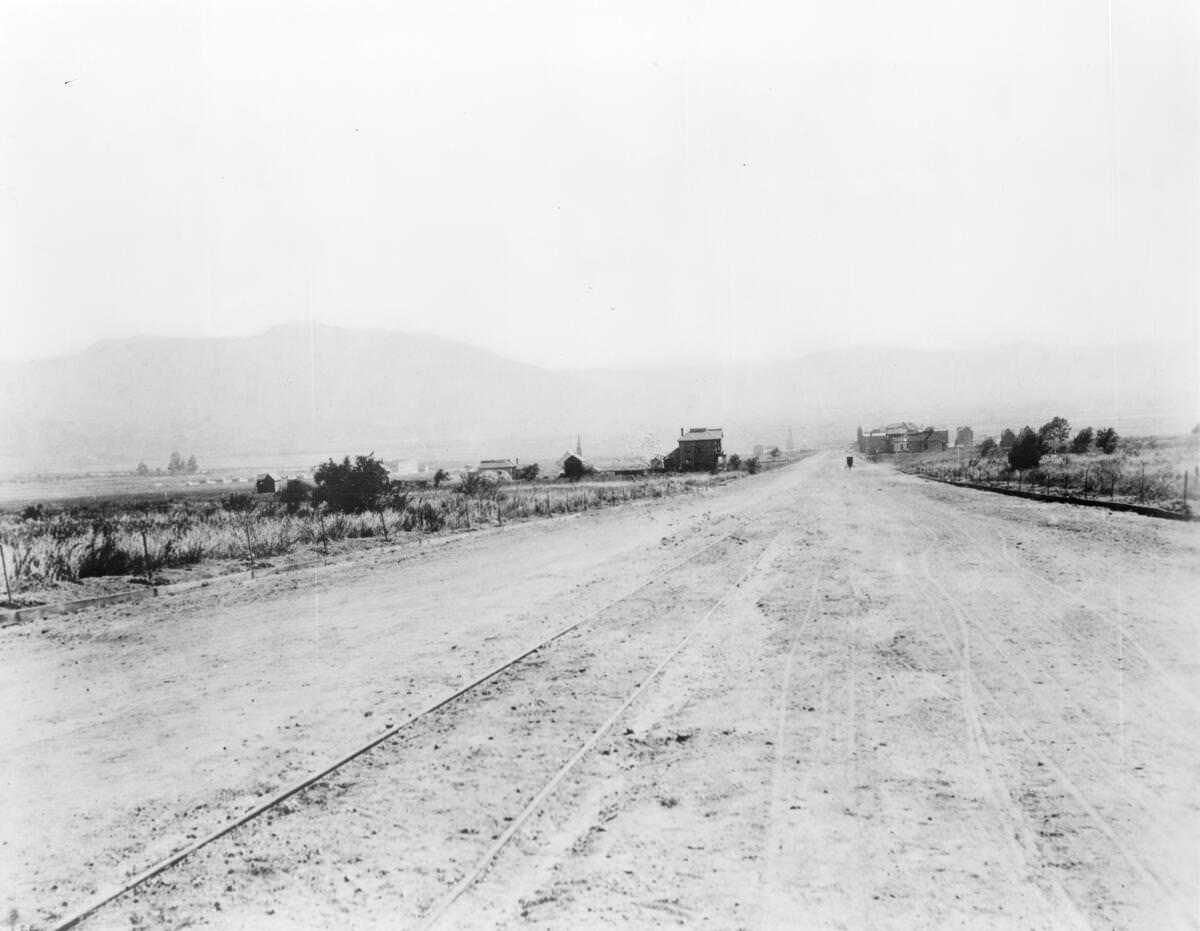 View of Olive Avenue looking southeast, showing Burbank in the distance, ca.1887