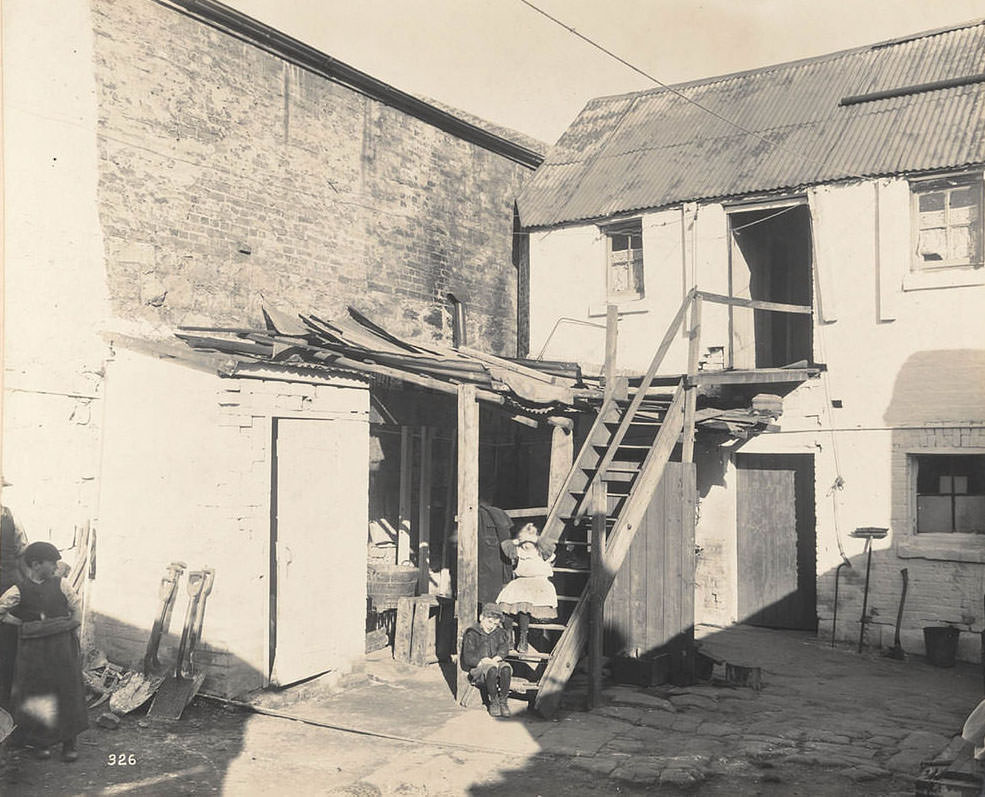 Shed at rear of No. 310 Castlereagh-street